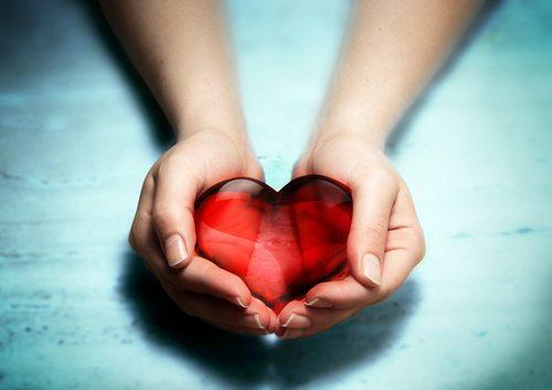 Euthansasia Saves Lives